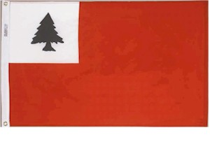 2' X 3' Continental Flag - Nylon - Product Image