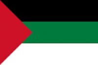 Palestine Nylon Flag - Product Image