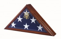 Vice Presidential Flag Case - Product Image