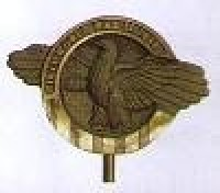World War II Grave Marker - Bronze - Product Image